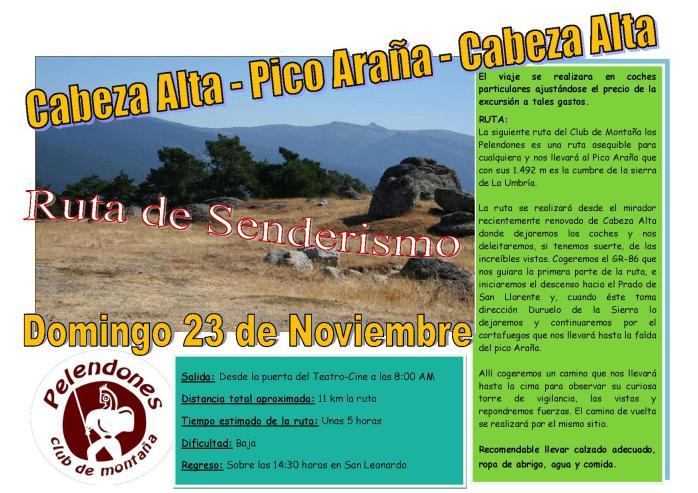 Cartel Cabeza Alta-Pico Araña